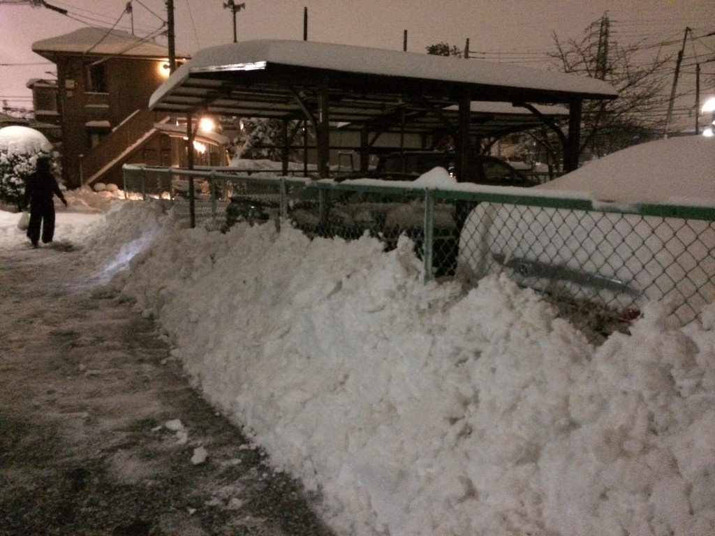 Too Much Snow in Tokyo